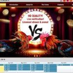 Indosport303 Agen Sabung Ayam Online S128 Terpercaya