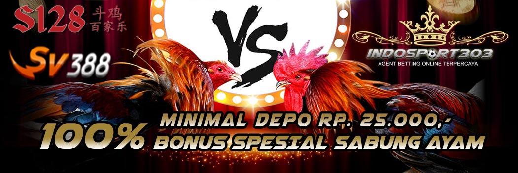 adu ayam, ayam bangkok, agen sabung ayam, sabung ayam online, ayam filipina, ayam laga, ayam sabung, judi ayam, judi sabung ayam, promo sabung ayam, sabong ayam, sabung taji, situs sabung ayam, taruhan sabung ayam