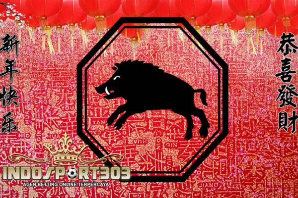 astrologi china, peruntungan shio babi 2017, Prediksi 12 shio, Ramalam shio, Ramalan Shio babi Tahun 2017