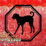 Ramalan Shio Anjing di Tahun Ayam Api 2017