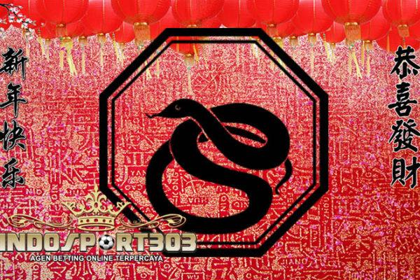 astrologi china, peruntungan shio ular 2017, Prediksi 12 shio, Ramalam shio, Ramalan Shio ular Tahun 2017