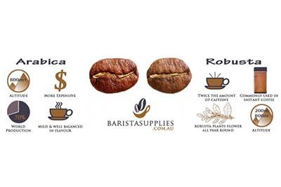 biji kopi, arabica, robusta, kopi, berita unik