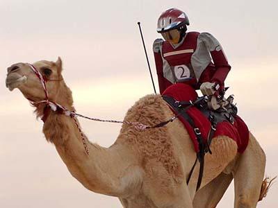 Dubai, berita unik, indosport303.com