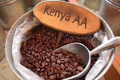 Kenya AA, biji kopi, kopi, coffee, berita unik