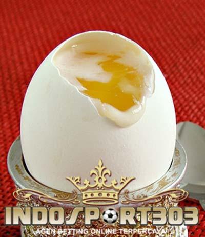khasiat madu dan telur, sabung ayam, sabung ayam online