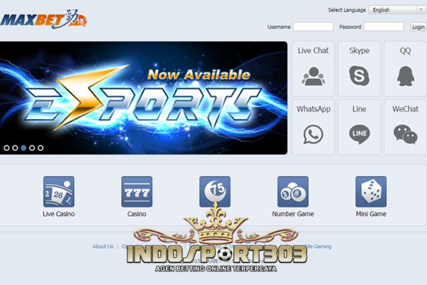 ibcbet, maxbet, Agen Betting Online, live casino online, sportsbook